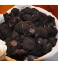 Truffe noire fraîche du Périgord 1ère catégorie