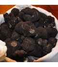 Fresh black truffle from Périgord 1st Category